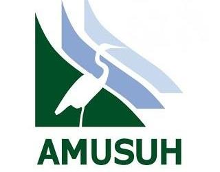 Amusuh